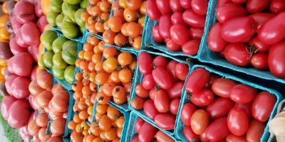 Tomato Table at Farmer's Market